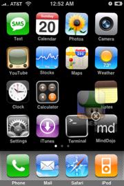 iPhone 1.1.3: già sbloccato!